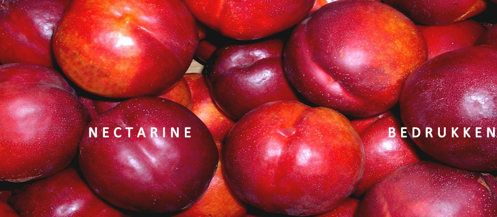 Nectarine bedrukken, fruit bedrukken, nectarine met logo